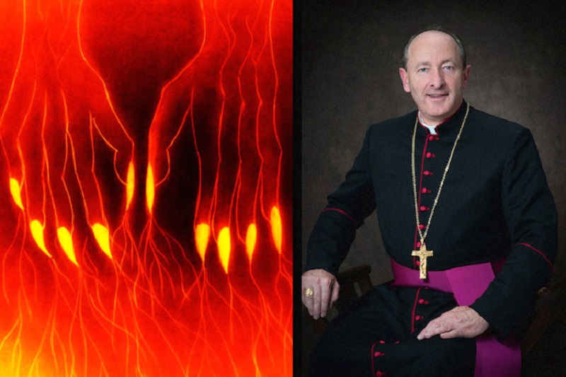 As Catholic Church Ignores its Pedophilia Scandals, Bishop Warns You that Reiki Energy Healing isSatanic